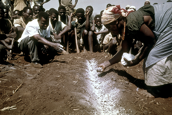 Agricultural Development in Malawi