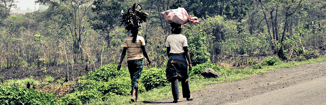 Women carying wood by Flickr SarahTz